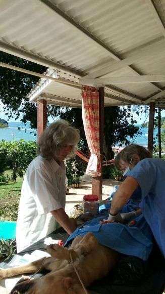 There isn't much time to look out over the view of beautiful Puerto Lindo, but it's still a lovely place to have a clinic